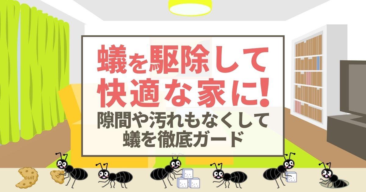 蟻を駆除して快適な家に! 隙間や汚れもなくして蟻を徹底ガード