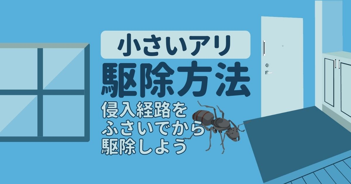 小さいアリ 駆除方法 侵入経路をふさいでから駆除しよう