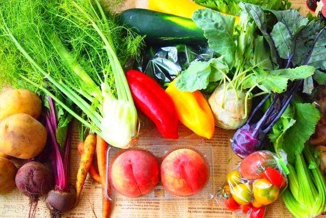 コバエが食べ物に発生したときの効果的な駆除方法とは?予防法も解説