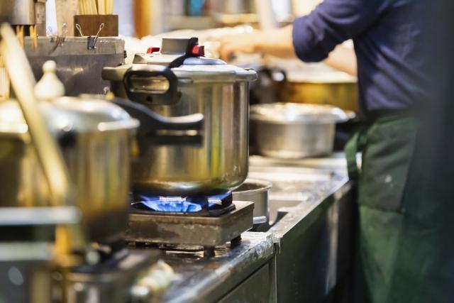 厨房のコバエ対策に適した駆除とは?発生を防ぐための予防方法も解説