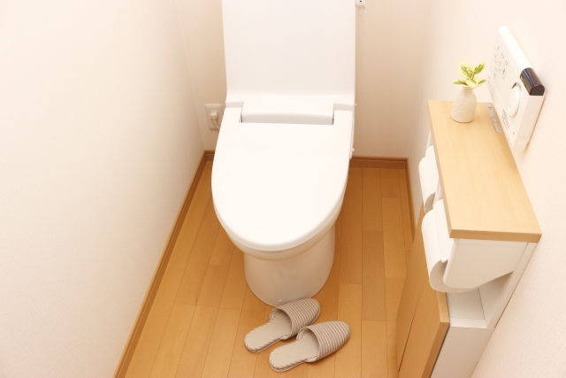 トイレでコバエが発生する原因!対策は成虫と幼虫の完全駆除がミソ