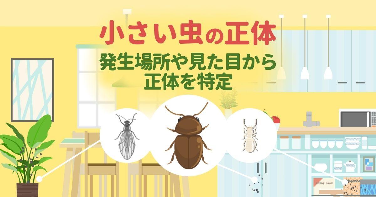 小さい虫の正体 発生場所や見た目から正体を特定