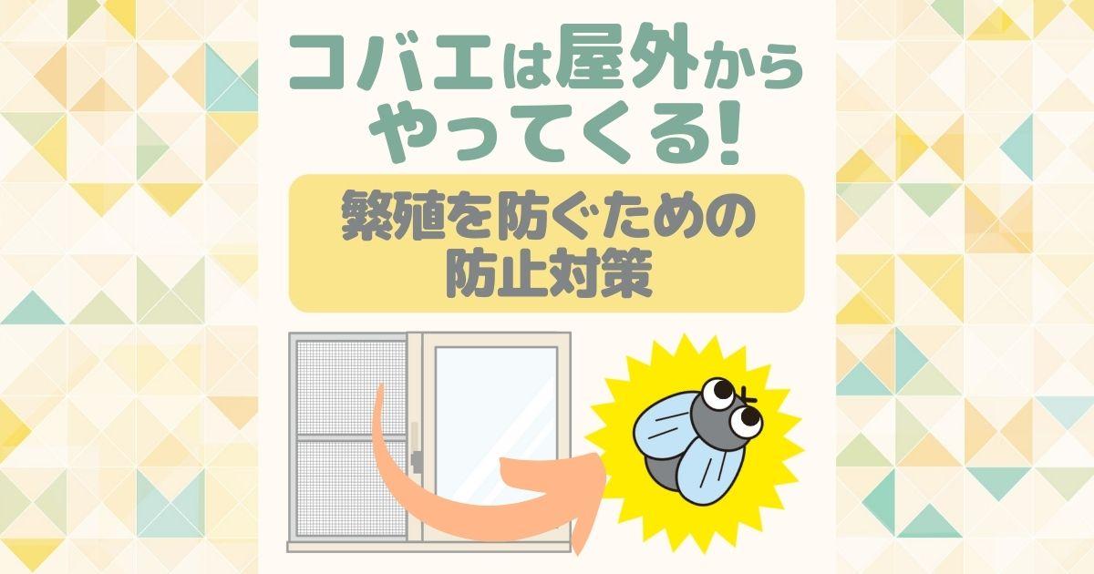 コバエは屋外からやってくる! 繁殖を防ぐため防止対策