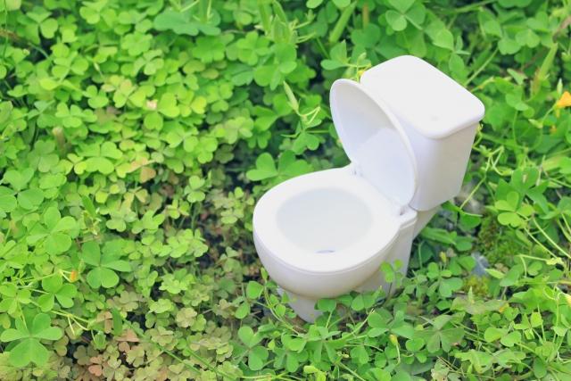 発生源【1】トイレ