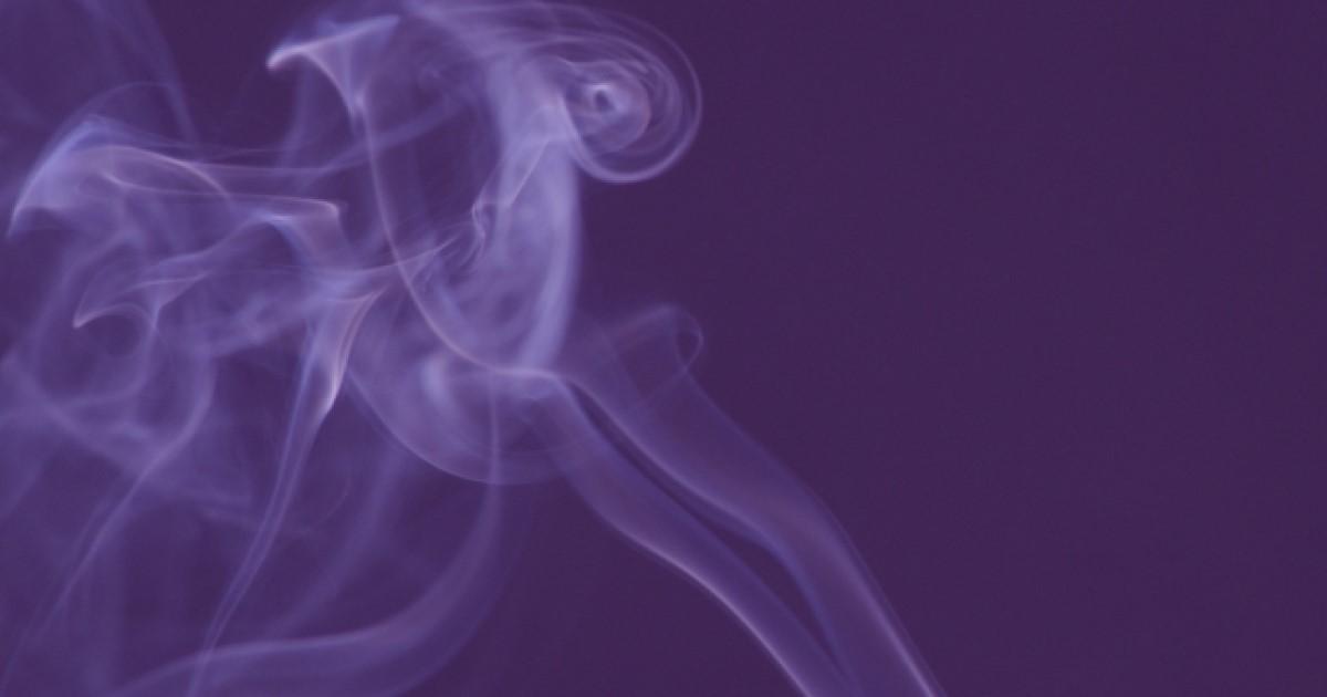 自分でシロアリ駆除!煙を使って効果的に床下から撃退・予防する方法