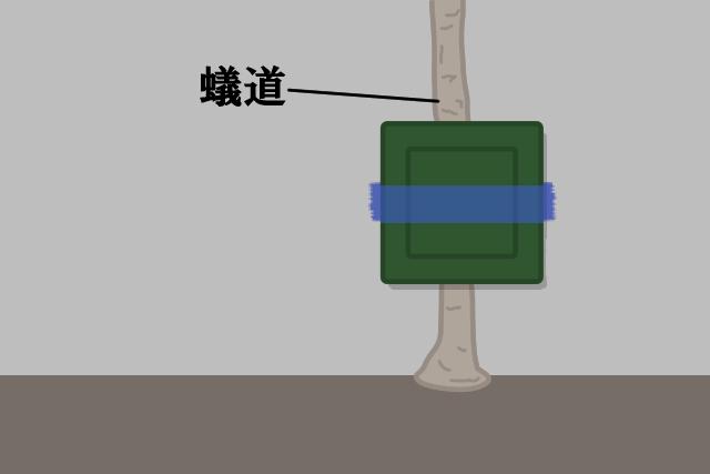 1. 家の周りの地面もしくは蟻道の近くに毒エサを設置する
