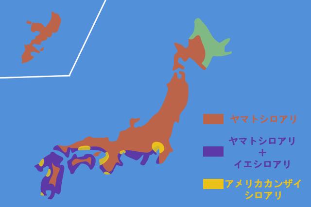 シロアリ分布図