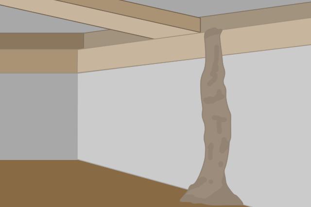 イエシロアリの蟻道