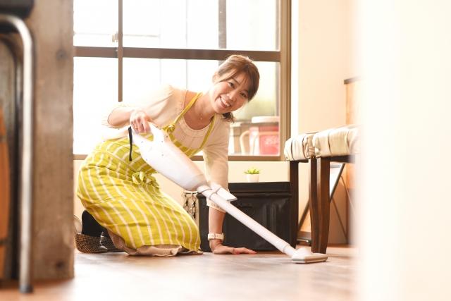 コバエは掃除機で吸っても大丈夫!掃除機を使った駆除方法をご紹介