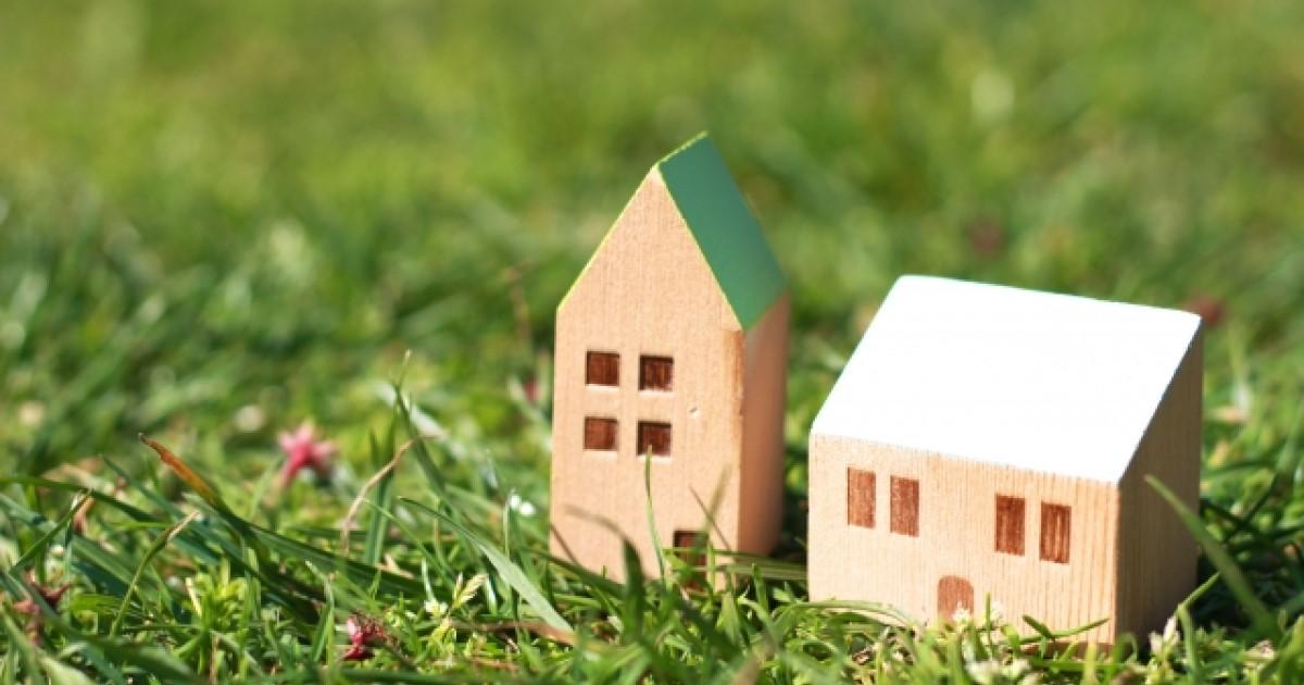 中古住宅はシロアリ被害を受けているかも!購入前のチェックポイント